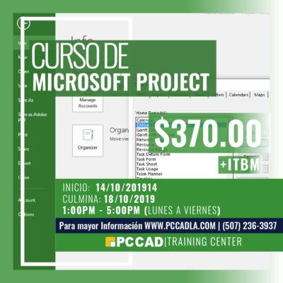 Curso MS Project